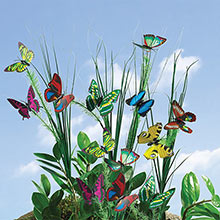 Fluttering Butterfly Stakes
