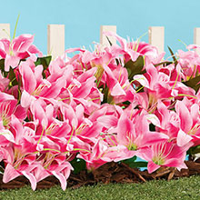 All-Weather Forever Blooms - Pink Lilies