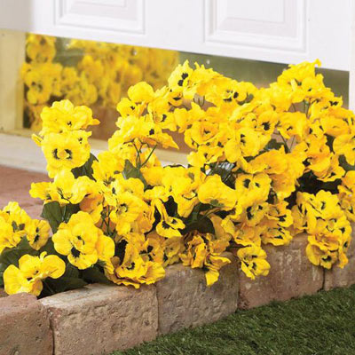 All-Weather Forever Blooms - Yellow Pansy