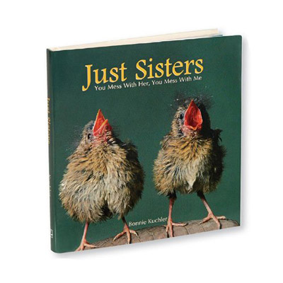 Just Sisters Book