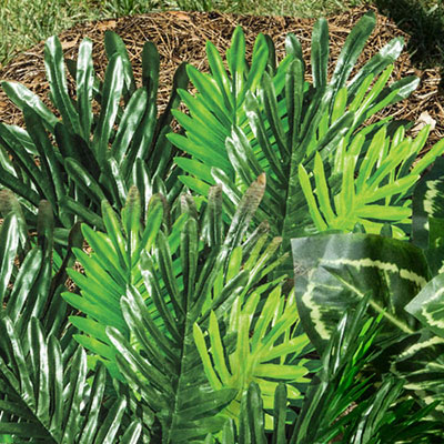 All-Weather Forever Plants - Sago Palm