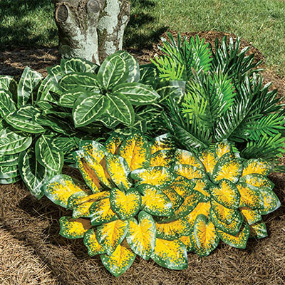 All-Weather Forever Shade Plants - Sago Palm - Set Of 2